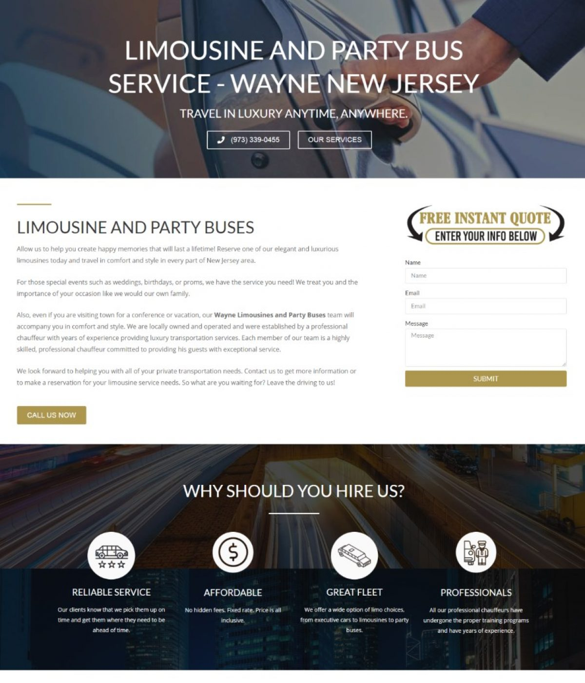 wayne limousines by mtb strategy